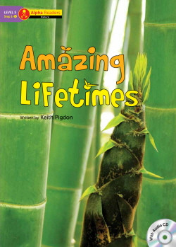 Amazing Lifetimes