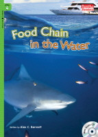 Food Chain in the Water